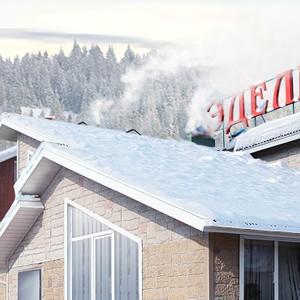 Эдельвейс зима