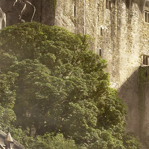 Сайт Castlevania