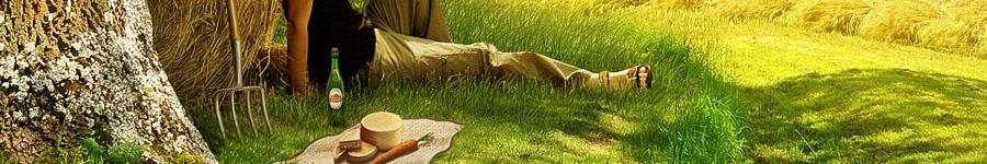 Stella Artois «Поле пшеницы»