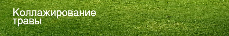 Коллажирование травы (для начинающих)