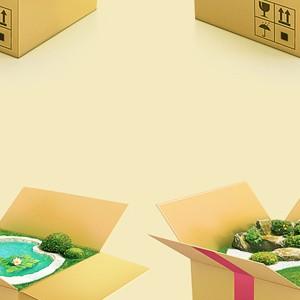 modulpark-коробочки