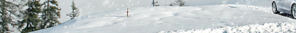 Audi snow