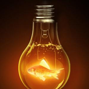 Лампочка энергосберегающая
