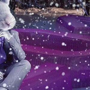 Кролик для календаря