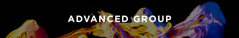Advanced Group Concept 2017