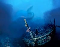 Подводный мир на конкурс