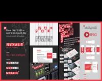 Никсейл (Nyxale). Нейминг и брендинг компании сектора Big Data