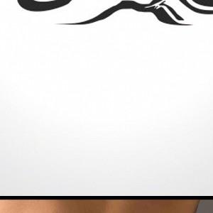 Лого Лс