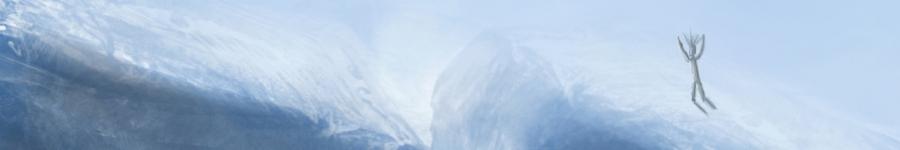 Туманный северный полюс