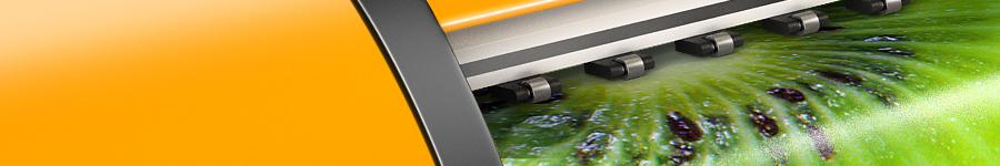 Широкоформатная печать (иллюстрация для билборда)