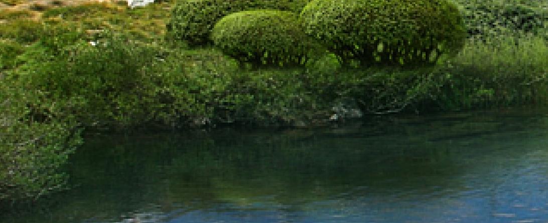 Matte painting. Создание отражений на воде