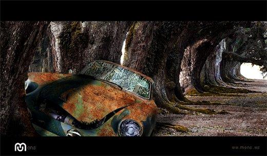 Car in Forest или первая проба пера