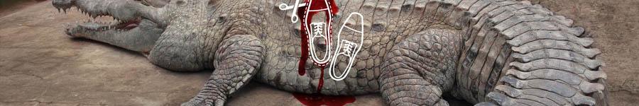Серия плакатов «Немного крови, зато ..»