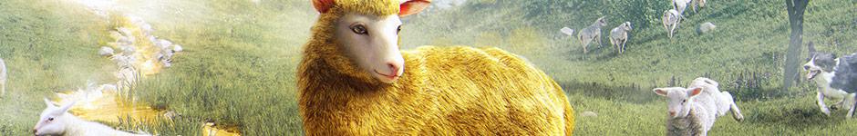 Золотая овечка