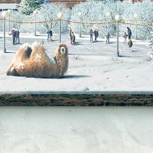 Кузнецово фон - Зима