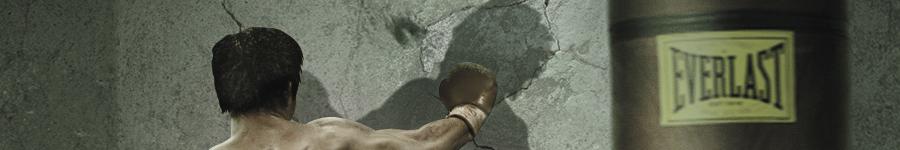 Бой с тенью