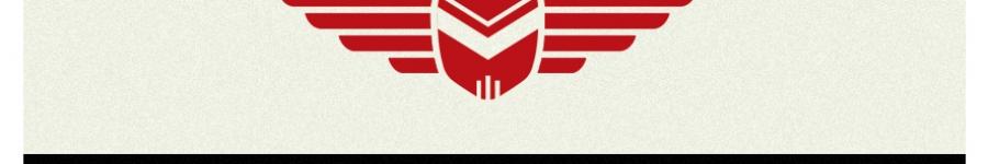 Лого для спидвейного клуба
